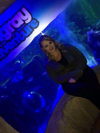 Sea Life Blackpool : My partner at the Stingray adventure!
