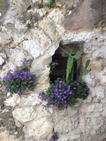 Saint-Paul de Vence: photo7.jpg