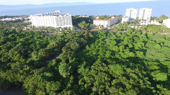 Marival Residences Luxury Resort Nuevo Vallarta: photo8.jpg