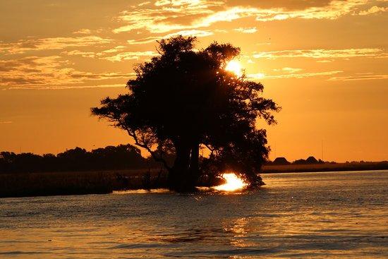 Kasane, Botswana: photo2.jpg