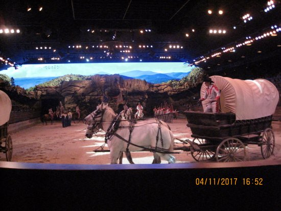 Dixie Stampede Dinner & Show: View from our seat.