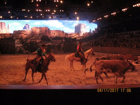 Dixie Stampede Dinner & Show: The show