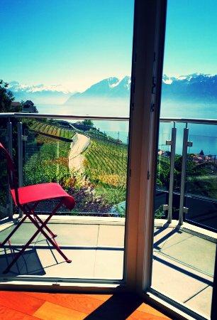 Grandvaux, Switzerland: aviary-image-1492878975591_large.jpg