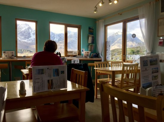 Blue Shed Cafe: photo2.jpg
