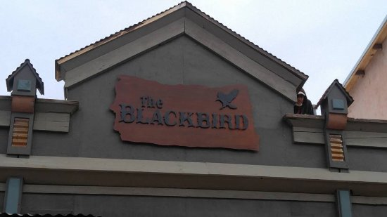 Cerrillos, NM: Blackbird sign on their building!