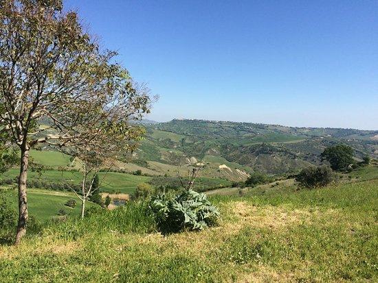 Cugnoli, Italia: IMG-20170424-WA0013_large.jpg