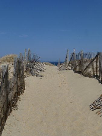 Race Point Beach: One of the beach access points.