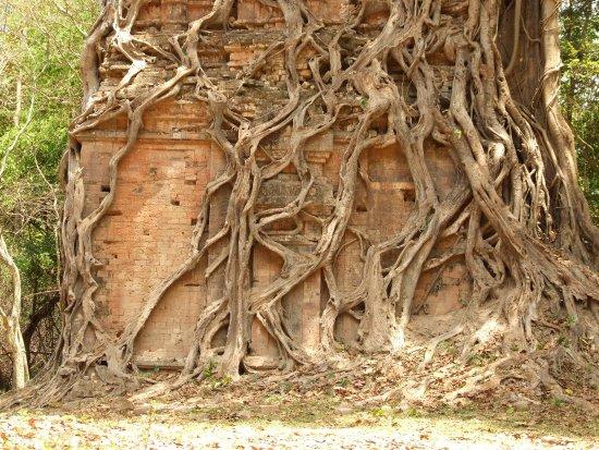 Kampong Thom, Καμπότζη: DSCF0411_large.jpg