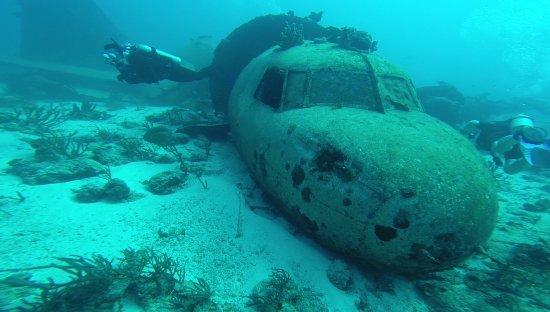 Mermaid Dive Center : Nach dem Durchtauchen des Flugzeugwracks