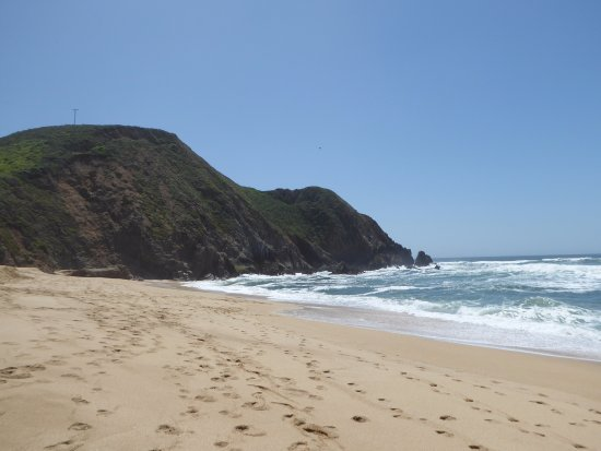 Gray Whale Cove State Beach: south view