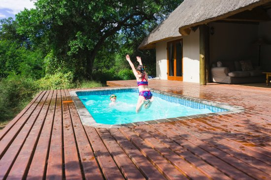 Hluhluwe, Sudáfrica: Fun in the pool (NB this our private pool that came with the Cottage - the main pool is much big