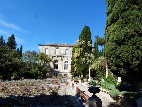 Villeneuve lez Avignon, France : Gepflegter Garten