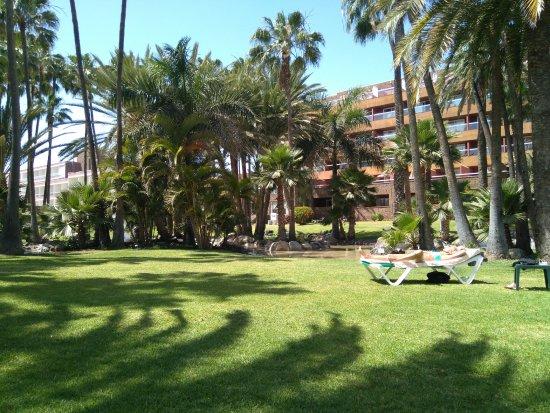 Jardin Avec Vue Sur Batiment Picture Of Hotel Riu Palace Oasis