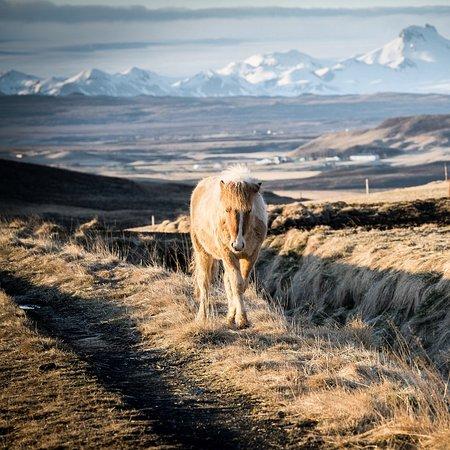 Fludir, Исландия: The scenery