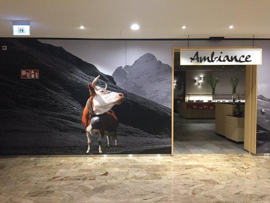Sunstar Alpine Hotel Grindelwald Photo