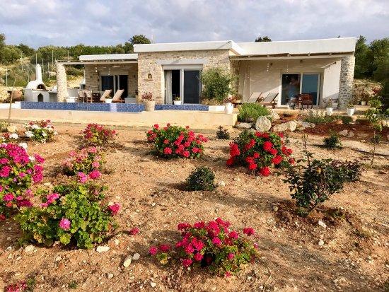 Καμηλάρι, Ελλάδα: Villa Petra