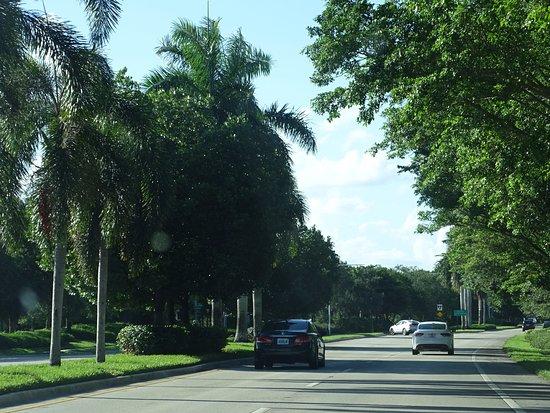 Vacation Village at Weston: Entrando por Bonaventure Boulevard.