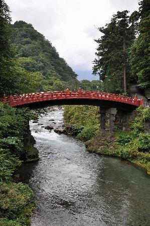Shinkyo: Contrasto efficiente rosso vermiglio e verde foresta