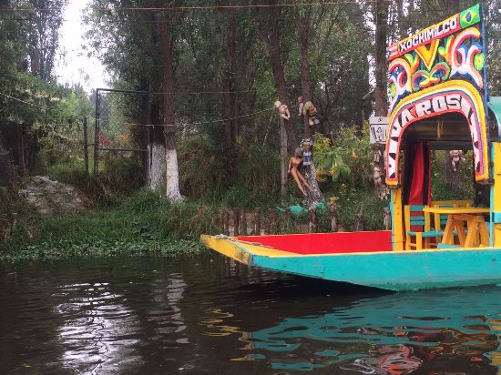 Gran Colorido De Sus Trajineras Picture Of Floating Gardens Of Xochimilco Mexico City