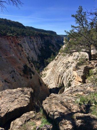Zion Ponderosa Ranch Resort: Jolly' Gulch, a beautiful canyon accessible by ATV.