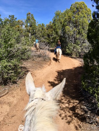Zion Ponderosa Ranch Resort: Guided horseback ride was unforgettable!
