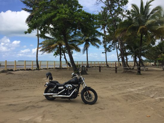 Dominican Riders - Day Tours : All day tour to the beach at Miches
