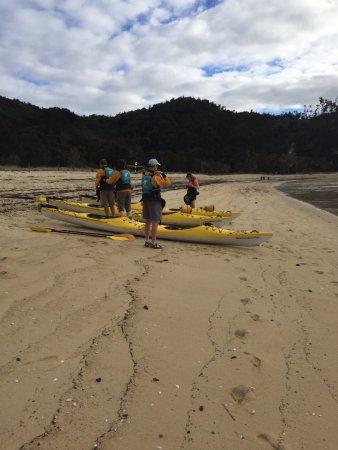 Национальный парк Абель-Тасман, Новая Зеландия: lunch break