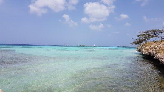 Savaneta, Aruba: 20170420_111820_large.jpg