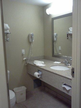 BEST WESTERN Royal Oak Inn: room 204 not updated still really good