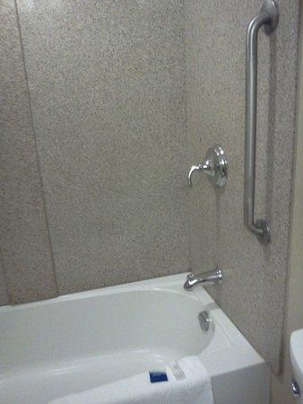BEST WESTERN Royal Oak Inn: room 204