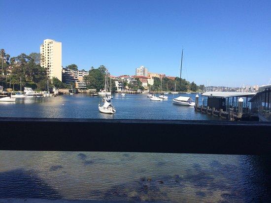 Neutral Bay, Australien: photo2.jpg