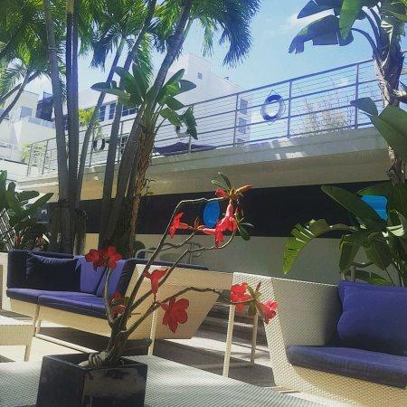 Albion South Beach: IMG_20170414_160425_329_large.jpg