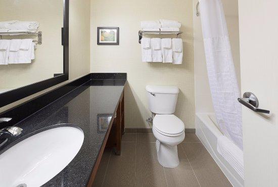 Saginaw, MI: Guest Bathroom