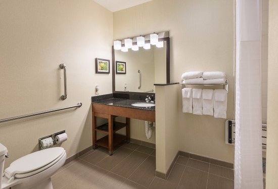 Comfort Suites Saginaw: Accessible Bathroom