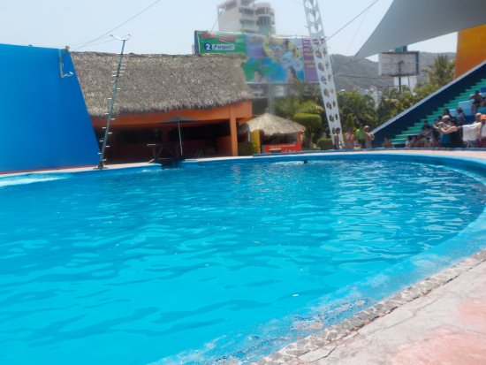 CiCi Acapulco Magico: Otra vista de la entrada al show de los delfines.