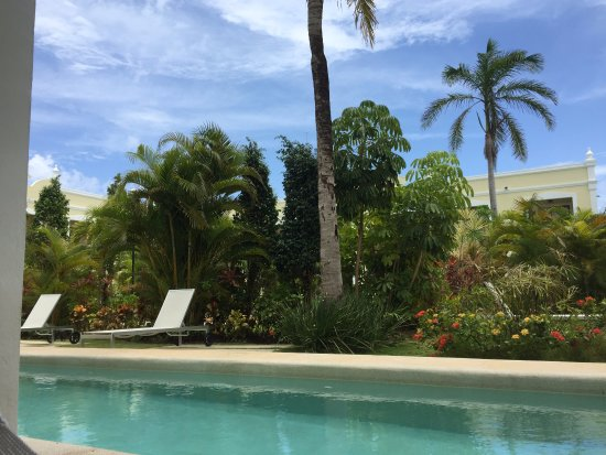Dreams Tulum Resort & Spa: Swim in and out is a great upgrade!