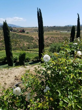Temecula, Kalifornien: View of the Falkner Winery