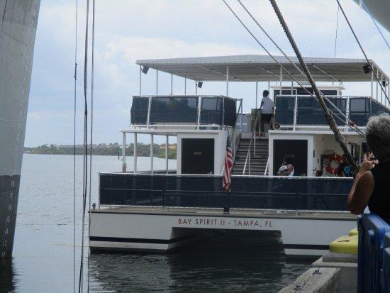 The Florida Aquarium: dolphin catamaran