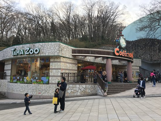 園内のショッピングセンター - Picture of Tama Zoological Park, Hino - TripAdvisor