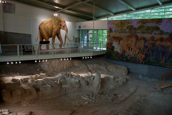 Waco Mammoth National Monument: The dig site