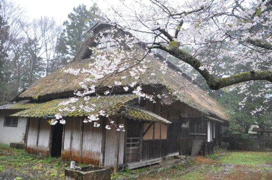 Hayashi Family Residence