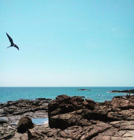 Los Santos Province, Panama: Isla Iguana, parte posterior de la Isla