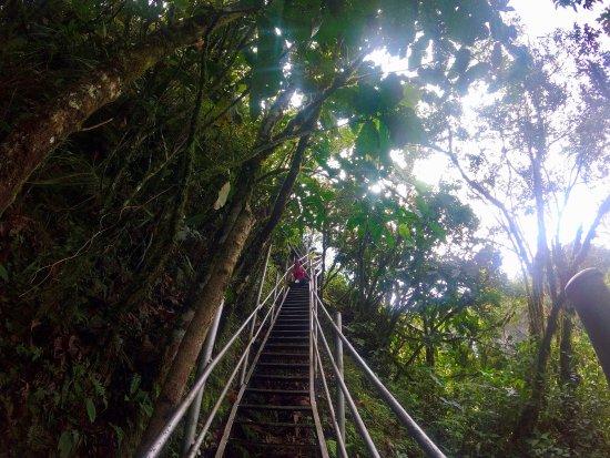 Ruta de las cascadas: Coming down