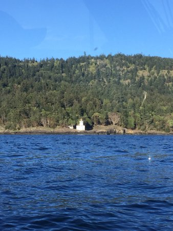 Picture of san juan island fishing charters for Fishing san juan islands