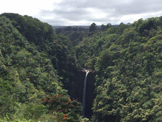 Honomu, HI: The gorge and waterfall Zipline 7 passes over
