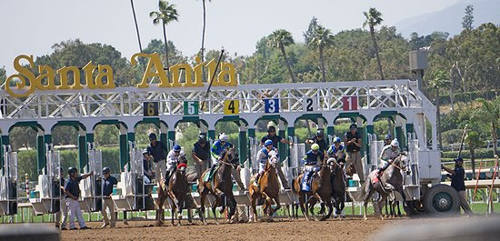Arcadia, CA: Santa Anita race park- take your camera- and have a great day!