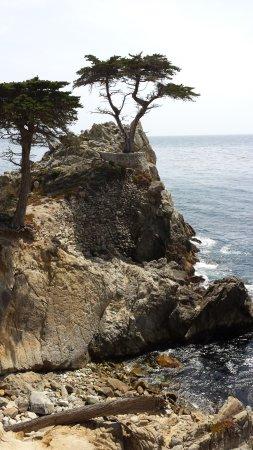 Pebble Beach, CA: Beautiful picture