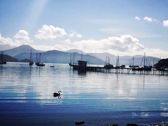 Bay Vista Waterfront Motel Photo