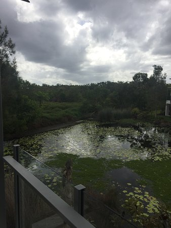 RACV Noosa Resort: photo4.jpg
