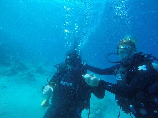 Gopr0726 picture of camel dive center aqaba for Aqaba dive